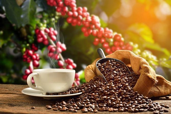 Specialty kávé - mi van valójában az elnevezés mögött?
